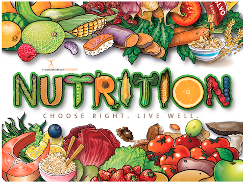 Do Your Nutrition Needs Change with Age? | Fun and Food Cafe